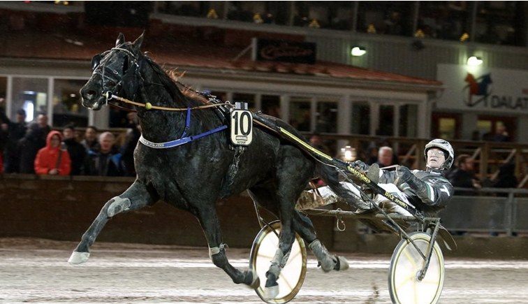 – On Track Piraten och Johnny takter vid sin seger på Romme den 5 december