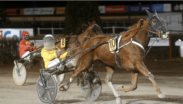 – Venkatesh och Örjan kan säkra en plats till Olympiatravet