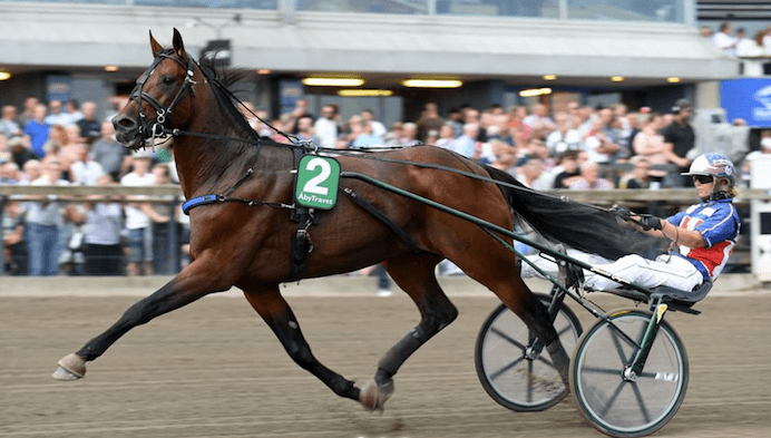 – Royal Fighter och Jennifer Tillman